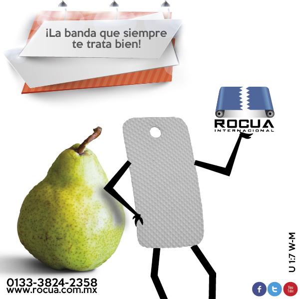bandas transportadoras industriales Rocua