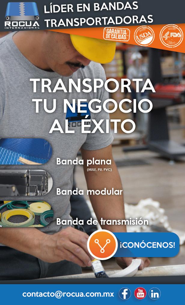 bandas transportadoras planas, modulares y de transmisión