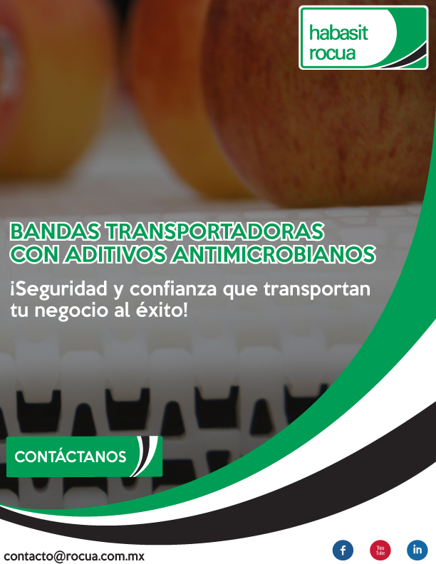 bandas-transportadoras-15